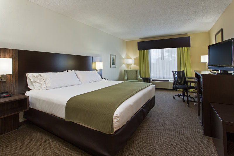 Holiday Inn Express & Suites Tampa-I-75 @ Bruce B. Downs-King Guest Room<br/>Image from Leonardo