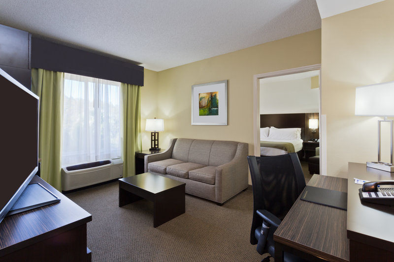 Holiday Inn Express & Suites Tampa-I-75 @ Bruce B. Downs-King Executive Suite living area<br/>Image from Leonardo