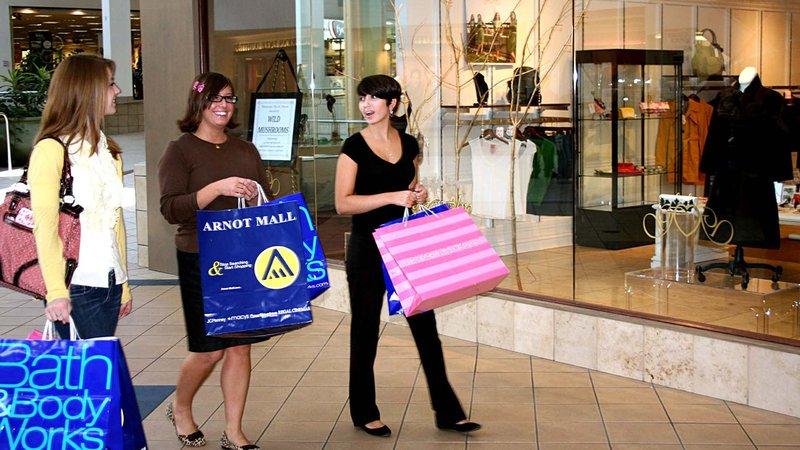 Holiday Inn Elmira - Riverview-Shopping at the Arnot Mall<br/>Image from Leonardo