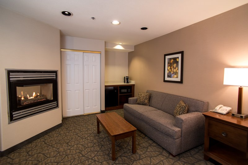Holiday Inn Express South Lake Tahoe-Sleeper Sofa<br/>Image from Leonardo