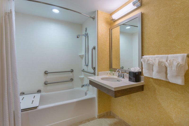 Holiday Inn Baltimore BWI Airport-ADA/Handicapped accessible Guest Bathroom with mobility tub<br/>Image from Leonardo