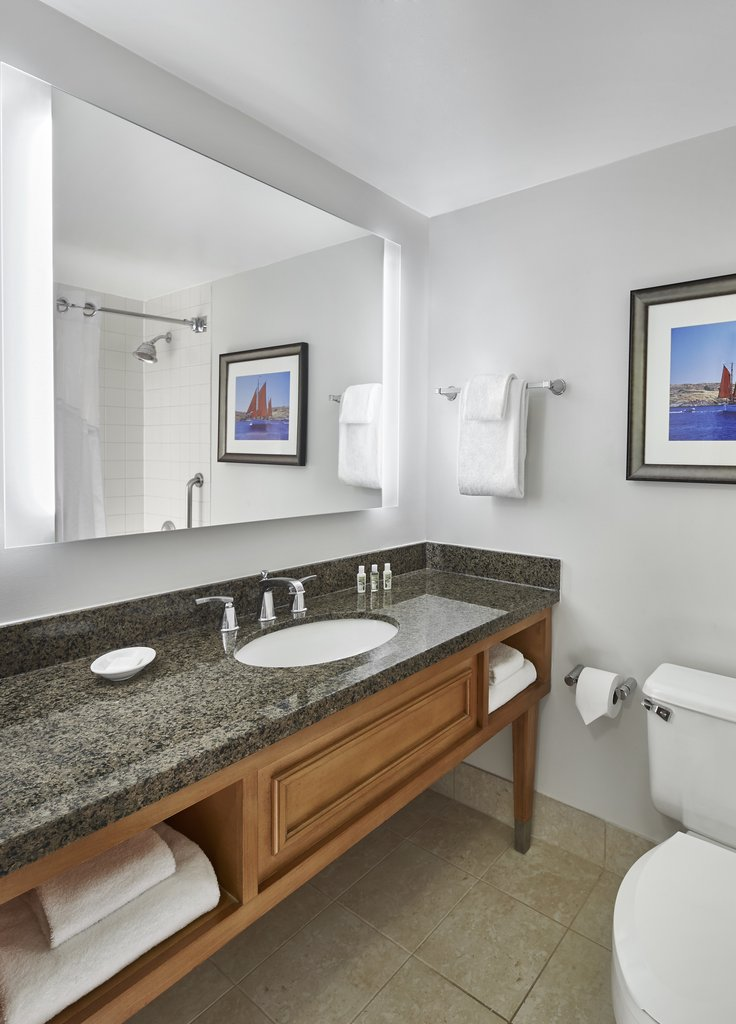Holiday Inn Hotel & Suites Alexandria Old Town-Guest Bathroom<br/>Image from Leonardo