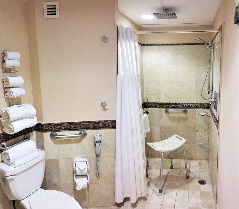 Crowne Plaza Hotel de Mexico-Wheelchair Accessible<br/>Image from Leonardo