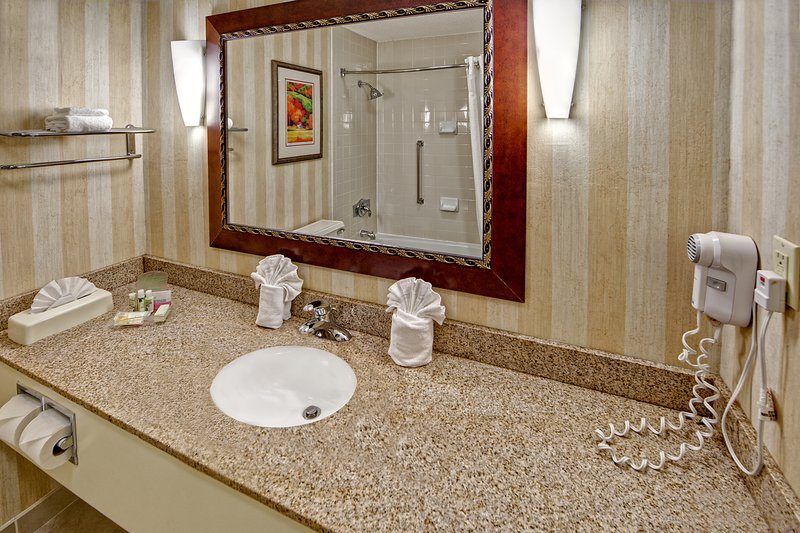Holiday Inn Asheville - Biltmore West-Clean and spacious bathrooms.<br/>Image from Leonardo