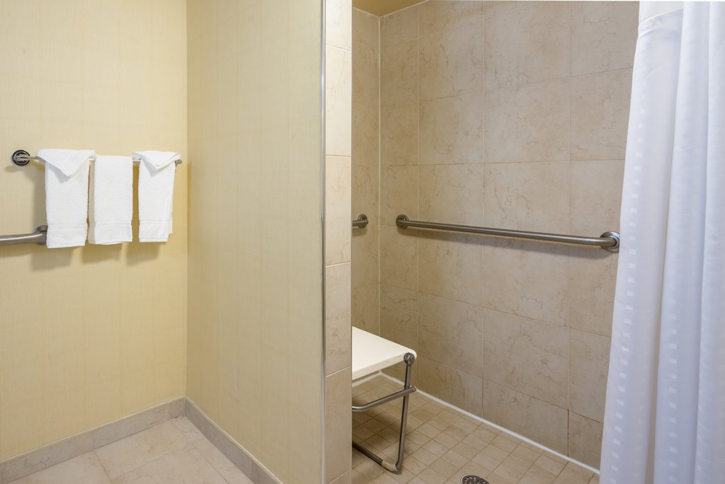 Holiday Inn Inner Harbor-Guest Bathroom Accessible Roll-in Shower<br/>Image from Leonardo