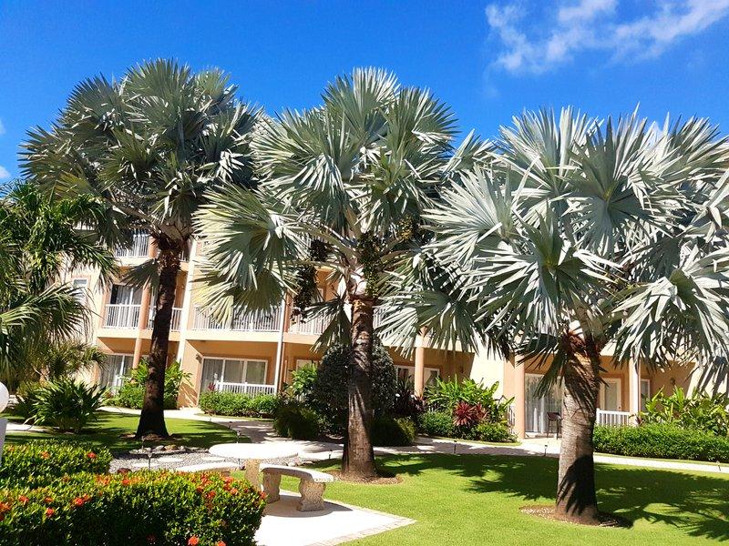 Holiday Inn Resort Grand Cayman-Scenery / Landscape<br/>Image from Leonardo