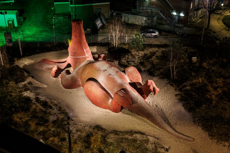 Holiday Inn Express Arnhem-Visit the unique Party Aardvark playground with your kids<br/>Image from Leonardo