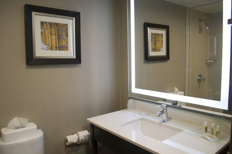 Holiday Inn Sudbury-Our Modern Bathrooms Were Designed With Comfort In Mind<br/>Image from Leonardo