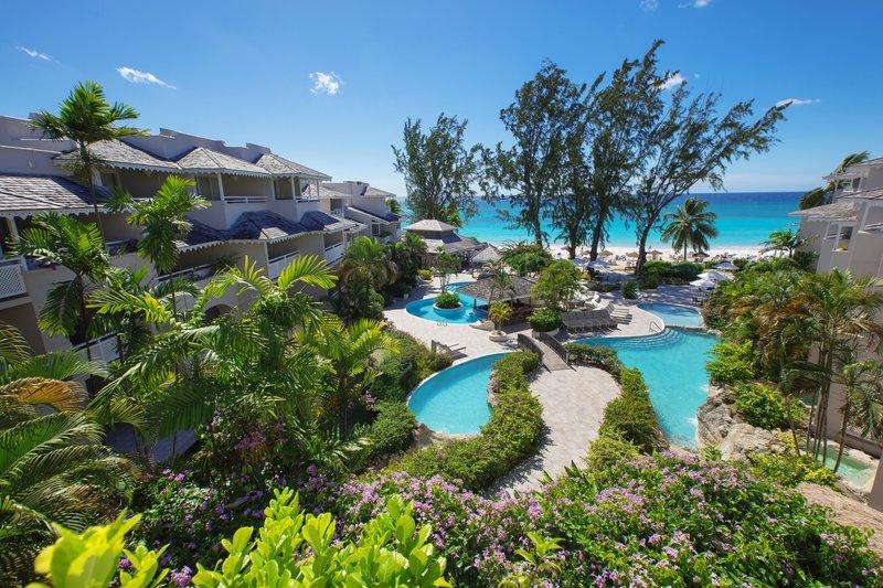 Bougainvillea Barbados-Bougainvillea Barbados<br/>Image from Leonardo