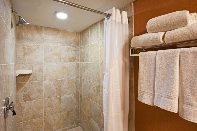 Holiday Inn Express Clearwater East - Icot Center-Bathroom Amenities<br/>Image from Leonardo