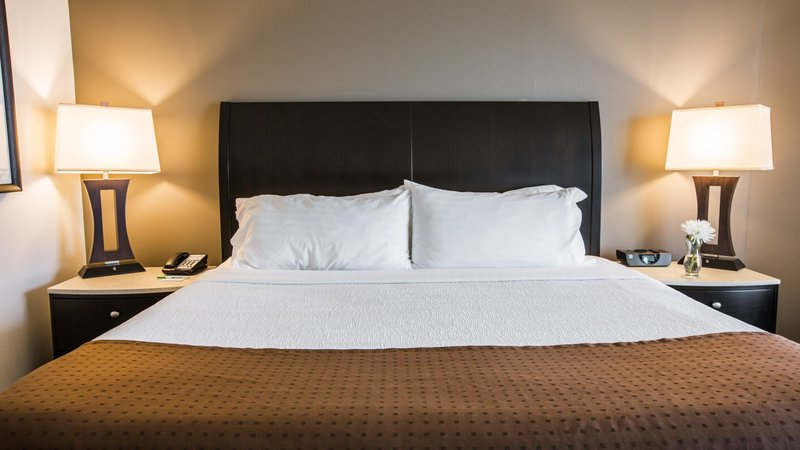 Holiday Inn Charleston Historic Downtown-Guest Room<br/>Image from Leonardo