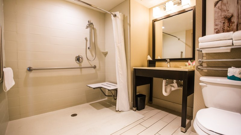 Holiday Inn Charleston Historic Downtown-Roll in Shower<br/>Image from Leonardo