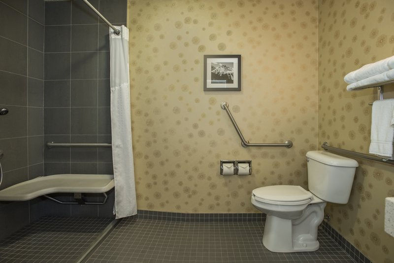 Holiday Inn Lethbridge-EnSuite wheelchair accessible shower<br/>Image from Leonardo