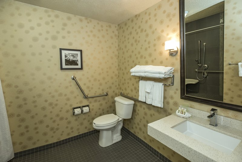 Holiday Inn Lethbridge-Bathroom accessible for our mobility-impaired guests<br/>Image from Leonardo