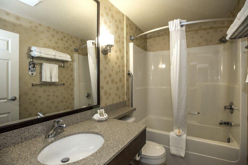 Holiday Inn Lethbridge-EnSuite bathroom<br/>Image from Leonardo