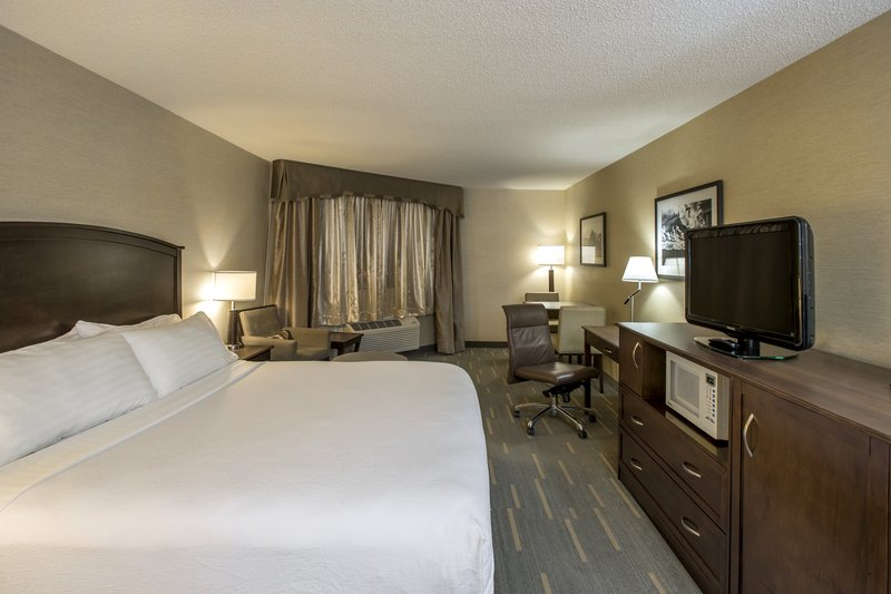 Holiday Inn Lethbridge-Bedroom with 1 King bed<br/>Image from Leonardo