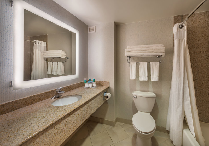 Holiday Inn Express & Suites Carson City-Guest Bathroom<br/>Image from Leonardo