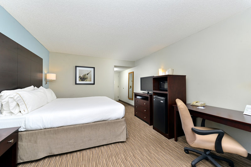 Holiday Inn Express & Suites Tampa/Rocky Point Island-King Bed Guest Room with Modern Decor <br/>Image from Leonardo