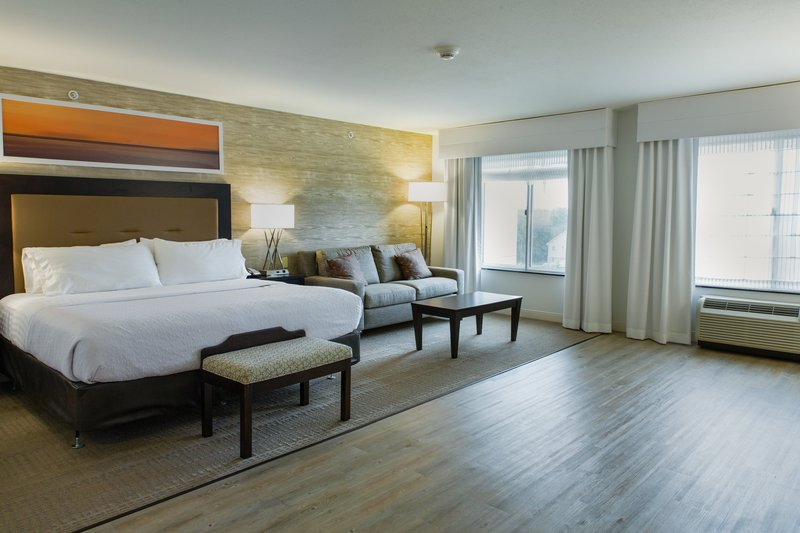 Holiday Inn Hotel & Suites Bloomington - Airport-ADA King Guest room with full size sofa sleeper<br/>Image from Leonardo