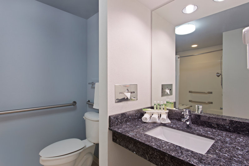 Holiday Inn Express Hotel & Suites Clearwater North/Dunedin-ADA/Handicapped Guest Bathroom vanity<br/>Image from Leonardo
