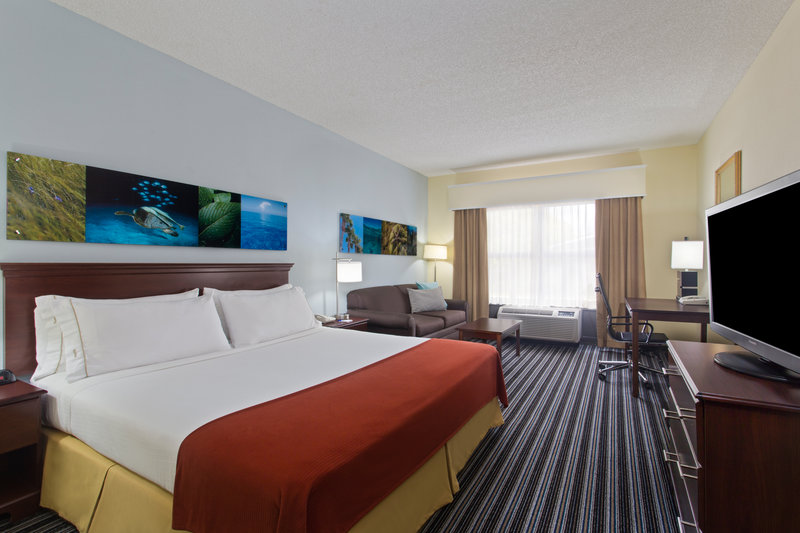 Holiday Inn Express Hotel & Suites Clearwater North/Dunedin-King Guest Room with sleeper sofa<br/>Image from Leonardo
