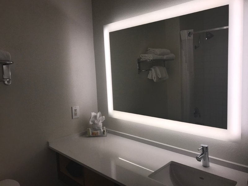 Holiday Inn Selma-Swancourt-Guest Bathroom <br/>Image from Leonardo