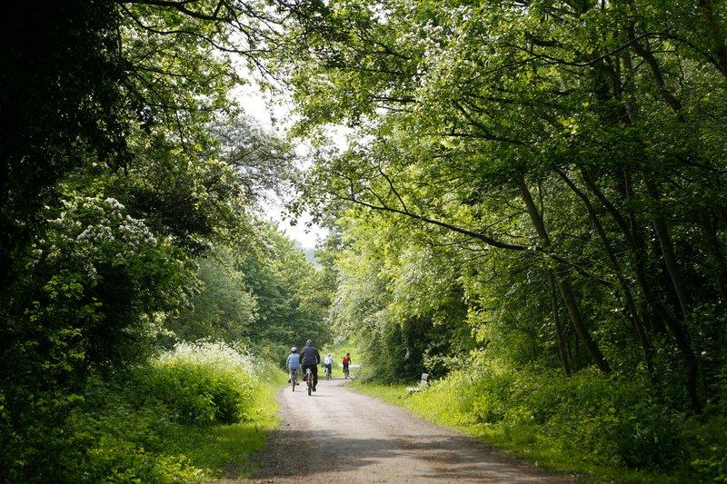 Holiday Inn Telford - Ironbridge-Enjoy a stroll in the parks nearby.<br/>Image from Leonardo