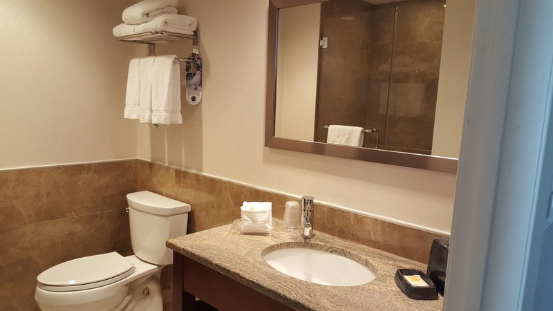 Holiday Inn L.I. City-Manhattan View-Beautifully designed with granite counters and plenty of space.<br/>Image from Leonardo