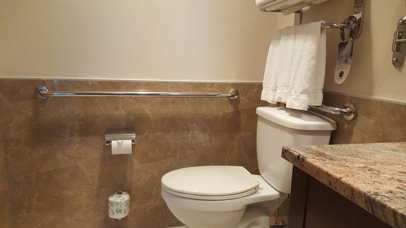 Holiday Inn L.I. City-Manhattan View-Bars are installed in bathroom to assist with disabled guests<br/>Image from Leonardo