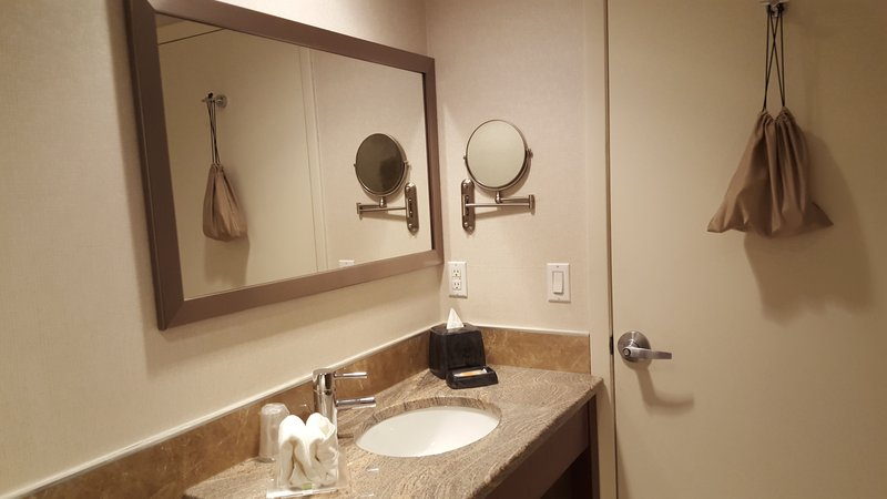 Holiday Inn L.I. City-Manhattan View-Shaving/Makeup Mirror, hair dryer is on the back of the door.<br/>Image from Leonardo