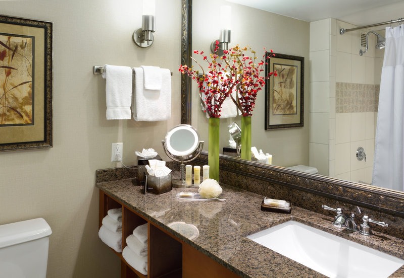 Crowne Plaza Minneapolis West-Guest Bathroom<br/>Image from Leonardo