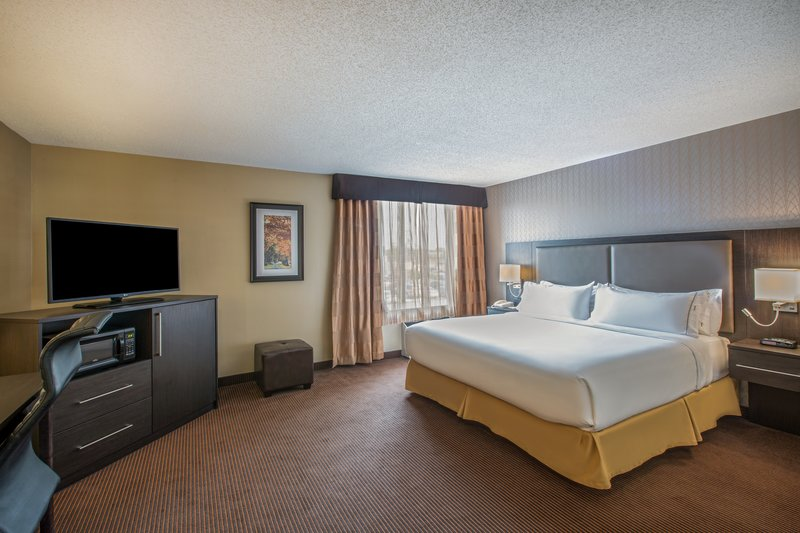 Holiday Inn Express & Suites Regina-King Bed Guest Room<br/>Image from Leonardo