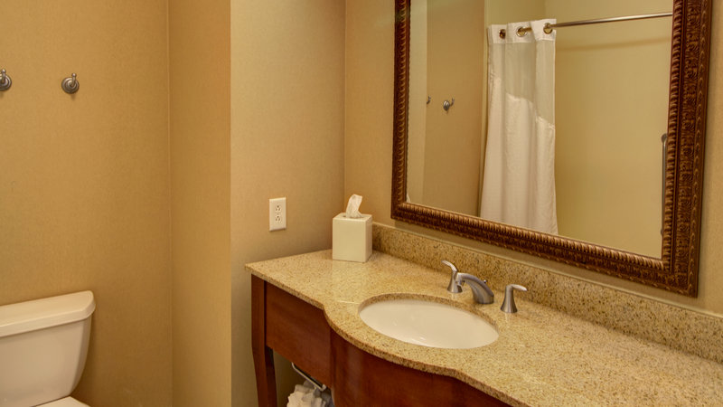 Holiday Inn Express & Suites Sioux City - Southern Hills-Standard Room Guest Bathroom<br/>Image from Leonardo