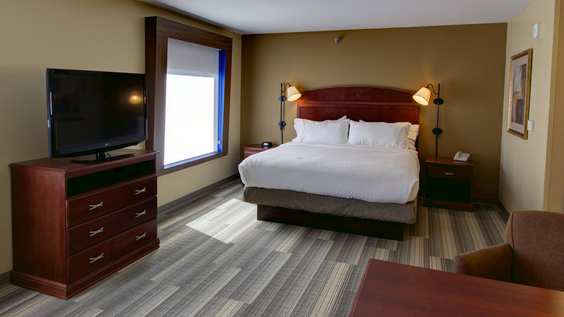 Holiday Inn Express & Suites Sioux City - Southern Hills-King Bed Suite with Queen Sofa Sleeper<br/>Image from Leonardo