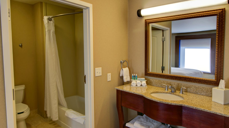 Holiday Inn Express & Suites Sioux City - Southern Hills-Suite Bathroom<br/>Image from Leonardo
