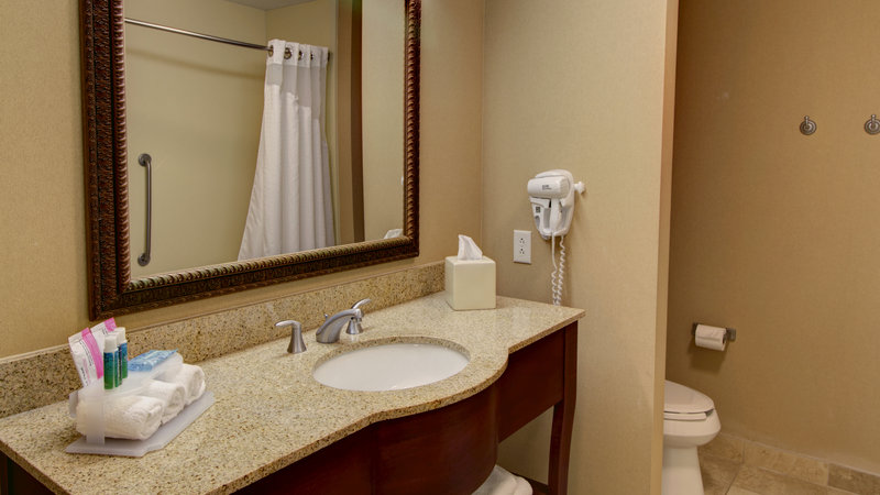 Holiday Inn Express & Suites Sioux City - Southern Hills-Guest Bathroom<br/>Image from Leonardo
