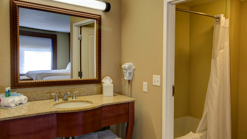 Holiday Inn Express & Suites Sioux City - Southern Hills-Suite Guest Room Bathroom<br/>Image from Leonardo