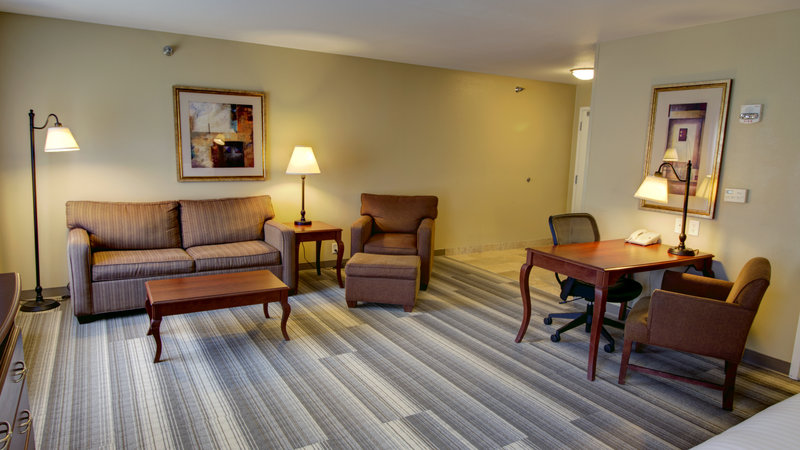 Holiday Inn Express & Suites Sioux City - Southern Hills-King Suite with Queen Sofa Sleeper <br/>Image from Leonardo