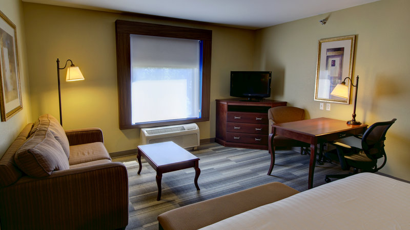 Holiday Inn Express & Suites Sioux City - Southern Hills-King Bed Guestroom with Queen Sofa Sleeper, Fridge and Microwave<br/>Image from Leonardo