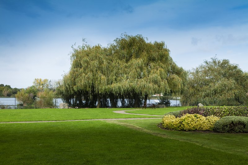 Holiday Inn Basildon-Hotel grounds at the rear overlooking the lake<br/>Image from Leonardo