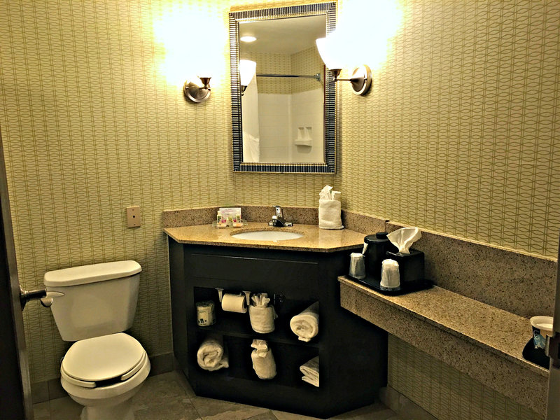 Holiday Inn Utica-Guest Bathroom<br/>Image from Leonardo