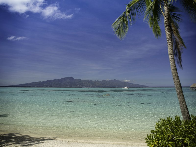 Sofitel Moorea Ia Ora Beach Resort-Bar/Lounge<br/>Image from Leonardo
