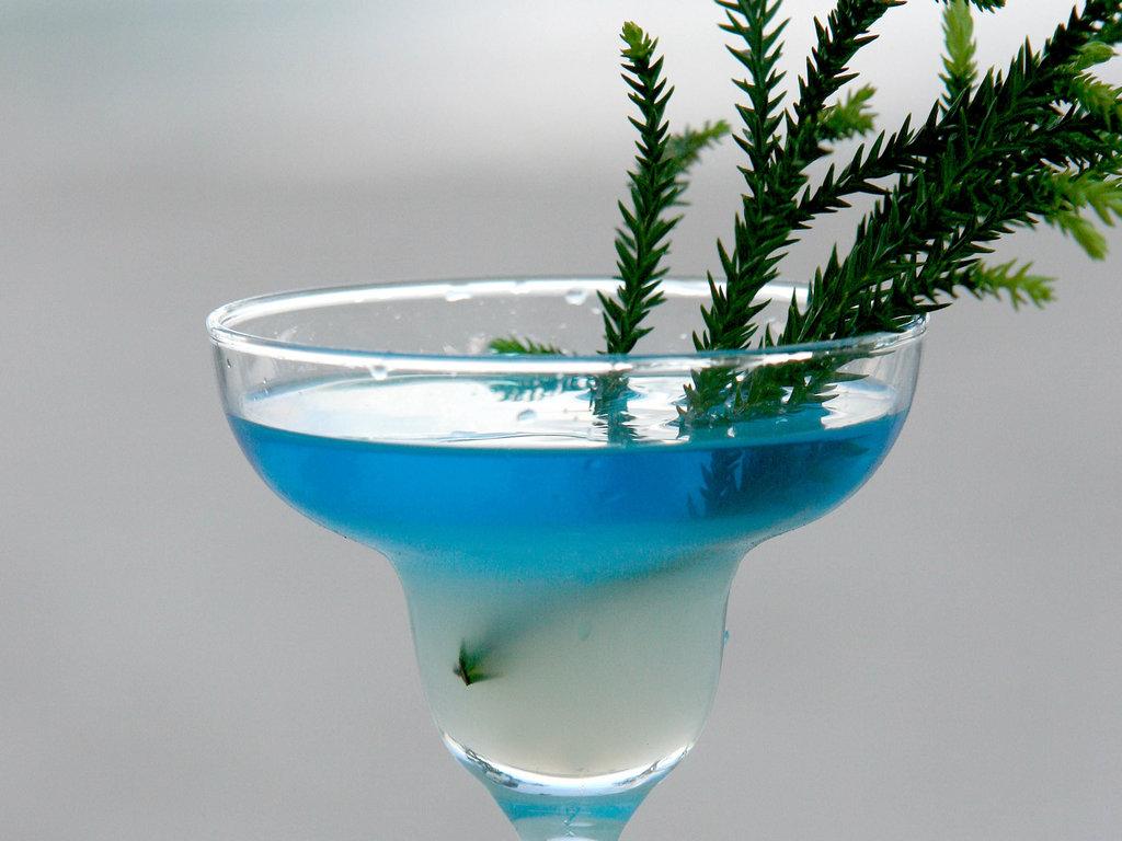 Sofitel Moorea Ia Ora Beach Resort - Bar/Lounge <br/>Image from Leonardo