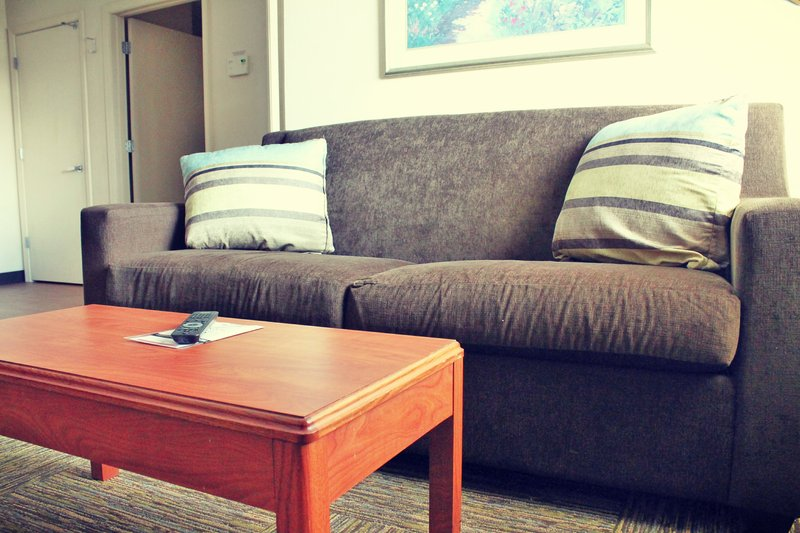 Candlewood Suites Syracuse-Airport-One Bredroom Suite Sleeper Sofa<br/>Image from Leonardo