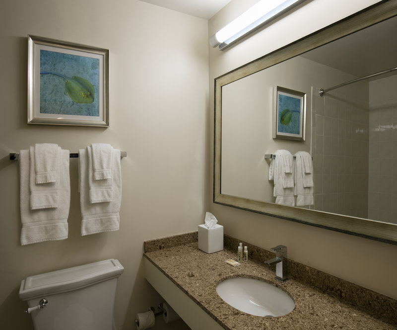 Lido Beach Holiday Inn-Bathroom<br/>Image from Leonardo