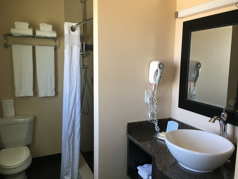 Holiday Inn Express Winnipeg Airport - Polo Park-1 King Bed Whirlpool Suite Bathroom<br/>Image from Leonardo