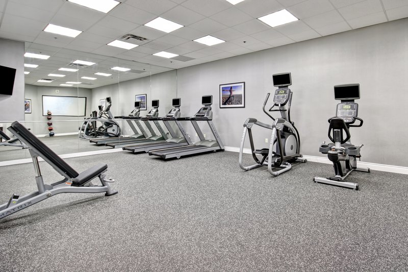 Holiday Inn Hotel & Suites Windsor (Ambassador Bridge)-Fitness Center<br/>Image from Leonardo