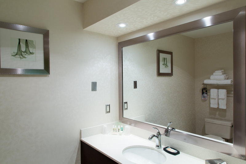 Holiday Inn Hotel & Suites Windsor (Ambassador Bridge)-Bathroom Amenities<br/>Image from Leonardo