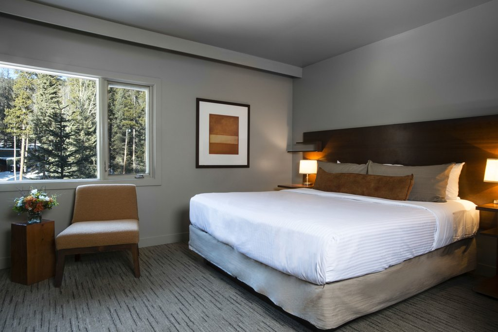 Juniper Hotel & Bistro-Standard Room 1 King Bed<br/>Image from Leonardo