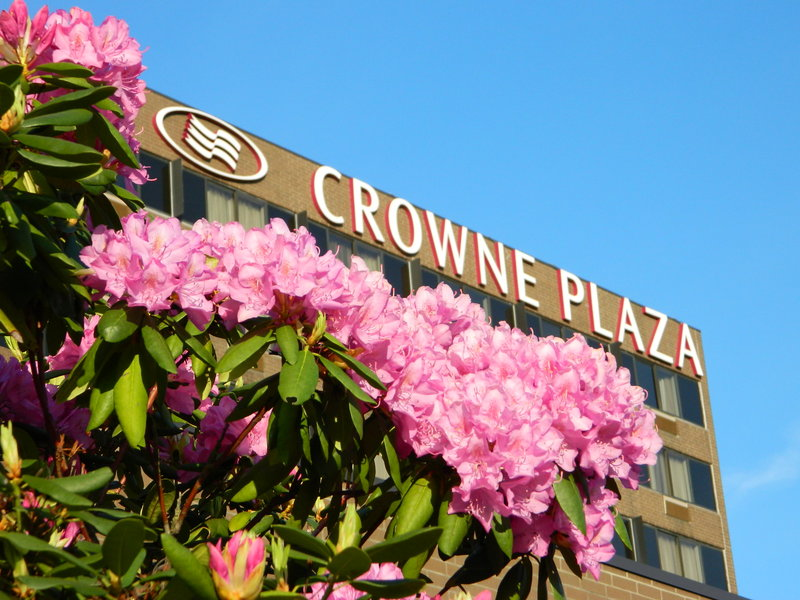 Crowne Plaza Danbury-Welcome to the Crowne Plaza Danbury<br/>Image from Leonardo